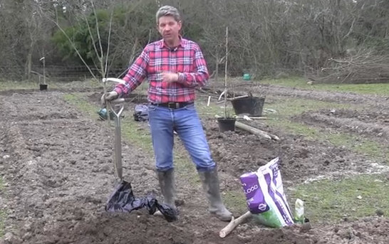 Learn how to garden with Mark Abbott-Compton